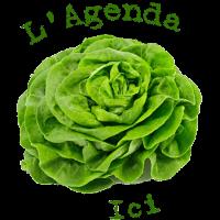 icone-agenda-MC
